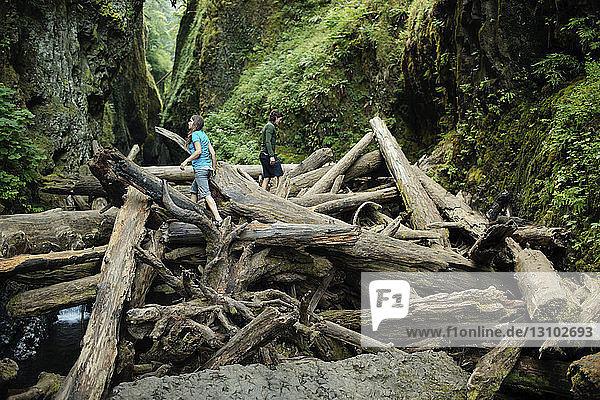 Ein Paar geht auf Baumstämmen inmitten von Felsformationen im Wald