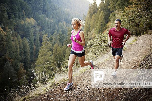 Männliche und weibliche Athleten beim Berglauf