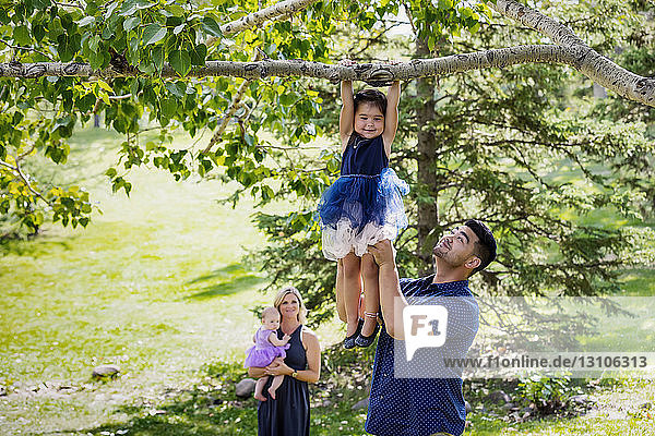 A mother and baby watch while the father holds his daughter high up to assist her in hanging from a tree branch during a family outing in a park on a warm fall day; Edmonton  Alberta  Canada