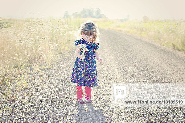 Full length of girl holding flowers on dirt road
