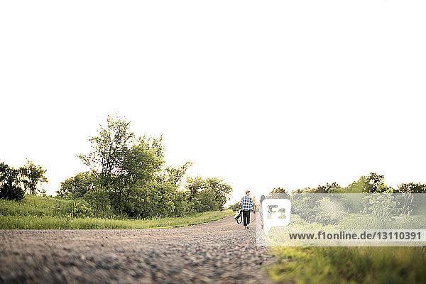 Fernansicht eines Paares  das sich an den Händen hält und bei klarem Himmel auf der Straße geht