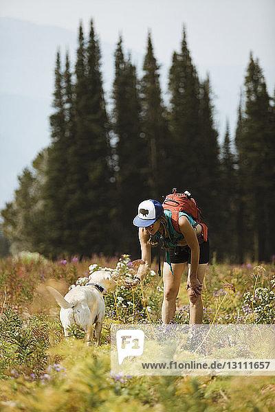 Frau trägt Rucksack und streichelt Hund  während sie auf dem Feld steht
