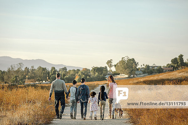 Rückansicht einer Familie mit Hund beim Spaziergang auf einem Feldweg im Wald