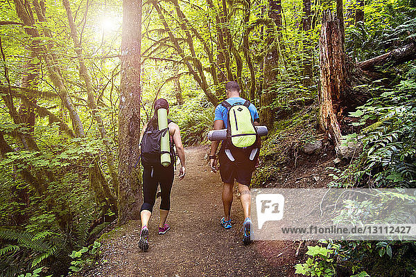 Rear view of couple walking on footpath through forest
