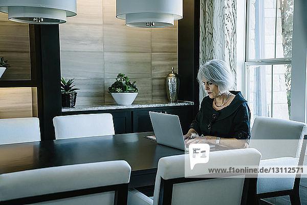 Geschäftsfrau  die am Laptop-Computer arbeitet  während sie im Sitzungssaal am Fenster sitzt