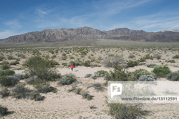 Mid distance view of boy with umbrella walking at Joshua Tree National Park