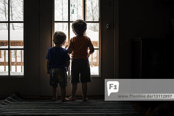 Rückansicht von Brüdern  die durch das Fenster schauen  während sie zu Hause stehen