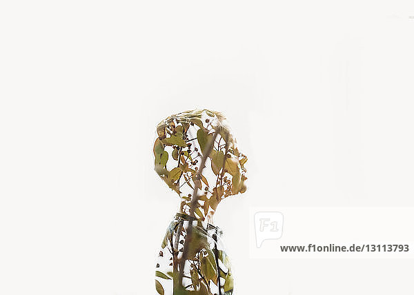 Double exposure of boy and tree against white background