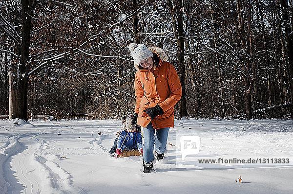 Glückliche Mutter zieht Kinder  die im Winter im Wald auf einem Schlitten sitzen