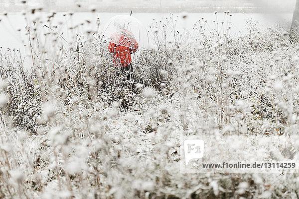 Rückansicht eines Jungen,  der im Winter im Wald steht und einen Regenschirm trägt