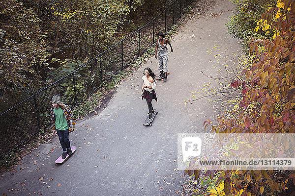 Hochwinkelaufnahme von Freunden beim Skateboarden auf der Straße