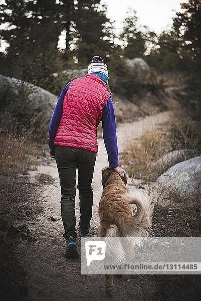 Rückansicht einer Frau beim Spaziergang mit Hund auf Sand Rückansicht einer Frau beim Spaziergang mit Hund auf Sand