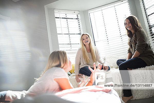 Fröhliche Freunde  die sich unterhalten  während sie sich zu Hause entspannen