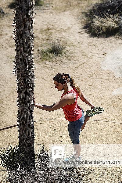 Frauen suchen männer strapon joshua tree