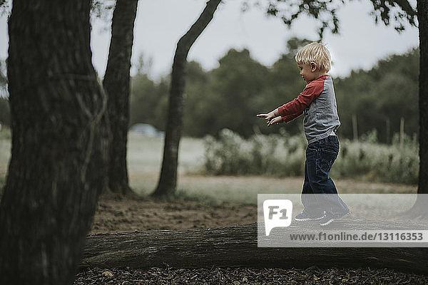 Side view of boy walking on fallen tree trunk
