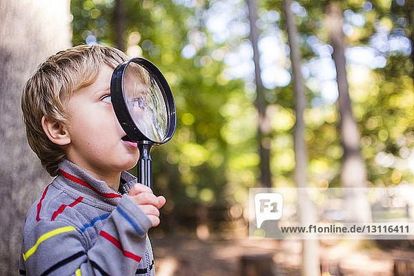 Verspielter Junge schaut im Wald durch eine Lupe