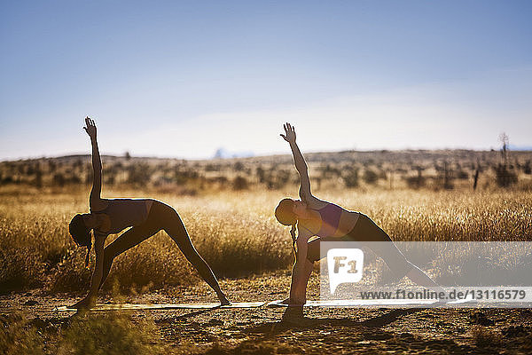 Female friends practicing yoga in triangle position on field
