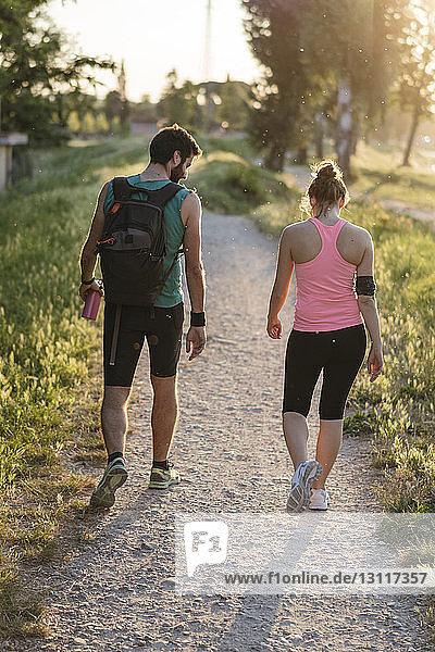 Rückansicht eines jungen Paares  das bei Sonnenuntergang im Park spazieren geht
