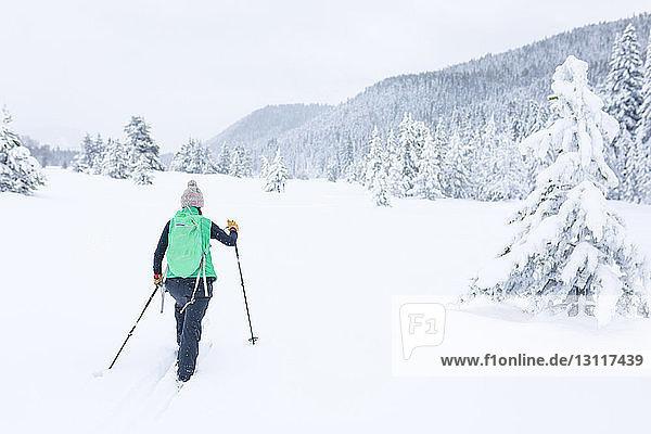 Rückansicht einer Wanderin  die auf einem schneebedeckten Feld wandert