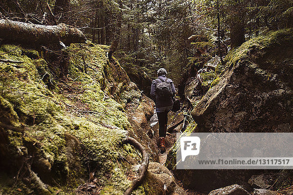 Rear view of woman walking amidst moss covered rocks in forest