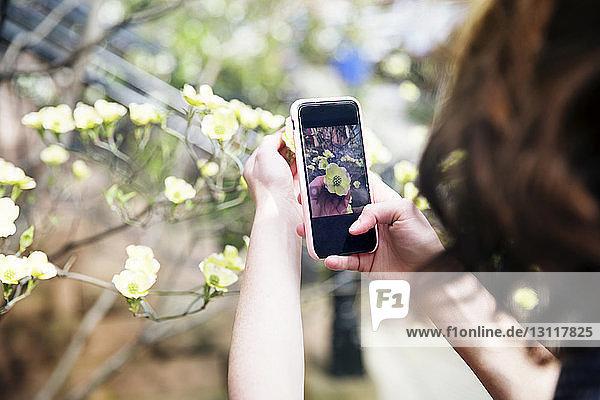 Ausschnitt einer Frau  die eine Blume am Fussweg fotografiert