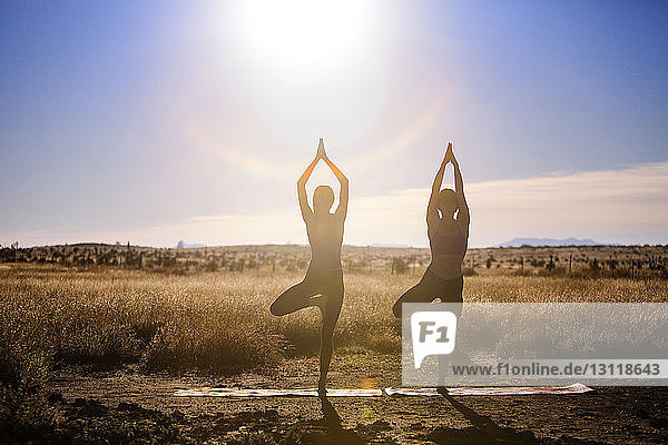 Women practicing yoga in tree pose on field