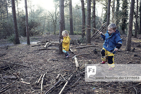 Siblings playing with sticks in forest
