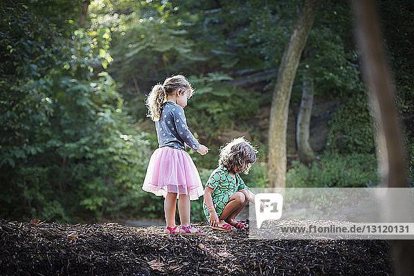 Kinder erforschen Sand im Wald