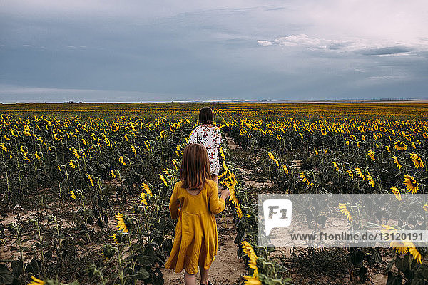Rear view of sisters walking in sunflower farm against cloudy sky
