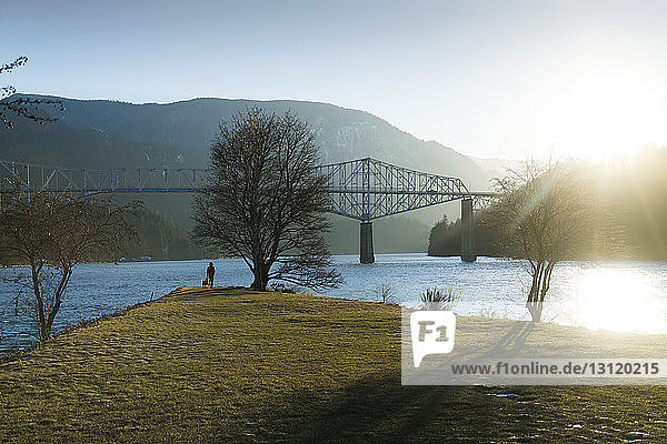Distant view of hiker with Golden Retriever standing at riverbank by cantilever bridge