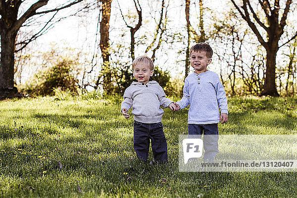 Porträt von niedlichen glücklichen Brüdern  die sich an den Händen halten  während sie auf einem Grasfeld stehen