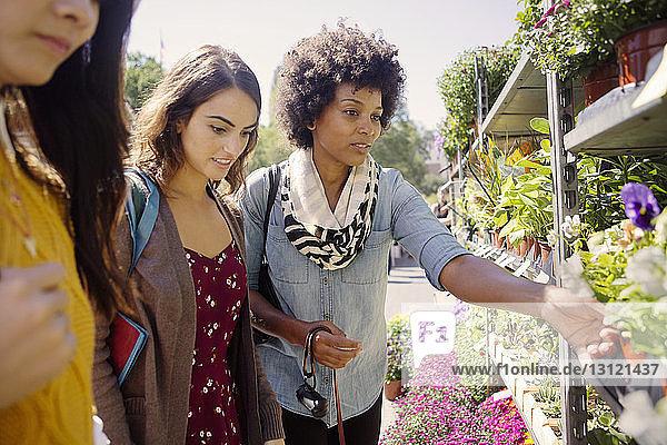 Freunde betrachten Blumen am Stand auf dem Markt