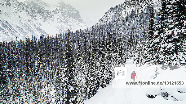 High angle view of hiker walking on snow covered field at forest