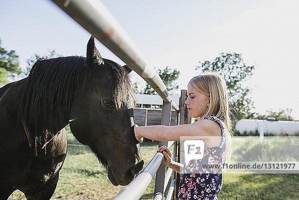 Seitenansicht eines Mädchens  das sein Pferd streichelt  am Stall