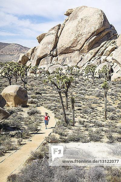 Hochwinkelaufnahme eines Wanderers  der am sonnigen Tag im Joshua-Tree-Nationalpark läuft