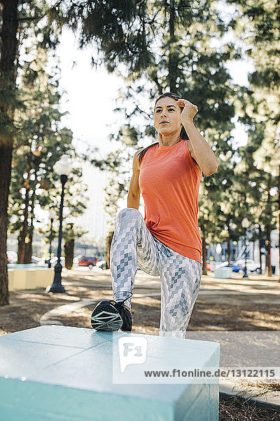 Determined female athlete exercising on small column at park