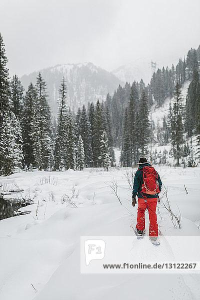Rückansicht einer Frau mit Rucksack  die auf einem schneebedeckten Feld im Wald läuft