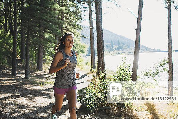 Frauen joggen im Wald am See