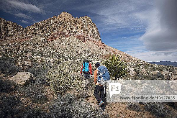Rückansicht von Freunden beim Wandern auf dem Berg gegen bewölkten Himmel
