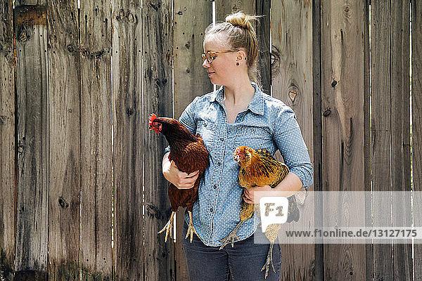 Frau trägt Hühner gegen Holzzaun