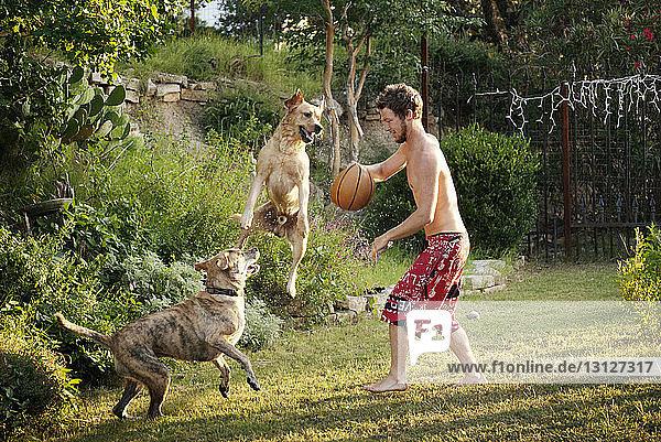 Mann spielt mit Hunden auf dem Rasen