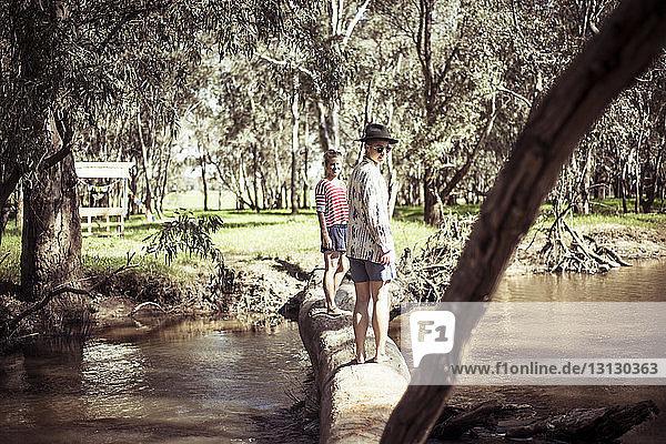 Full length of friends standing on fallen log over stream in forest