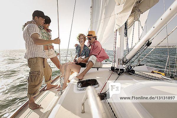 Lächelnde Freunde  die sich auf einer Schiffsreise auf See amüsieren