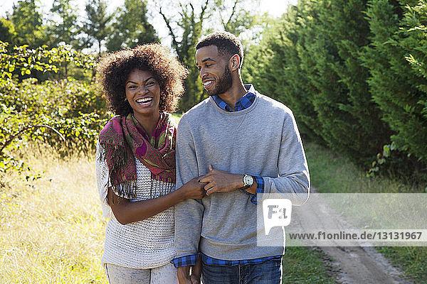 Glückliches Paar hält sich an sonnigen Tagen an den Händen und geht auf einem Grasfeld spazieren