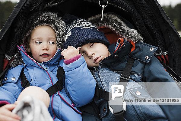 Close-up of siblings in baby stroller