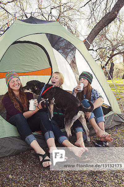 Fröhliche Frauen genießen mit Hund auf dem Campingplatz