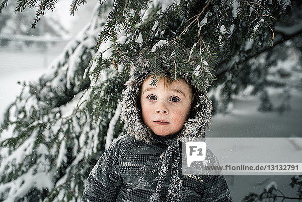Portrait of boy standing in forest during winter