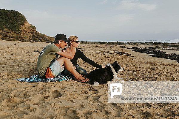 Paar mit Hund sitzt am Strand auf Sand
