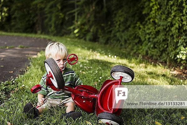 Bildnis eines Jungen mit Fahrrad auf einem Grasfeld