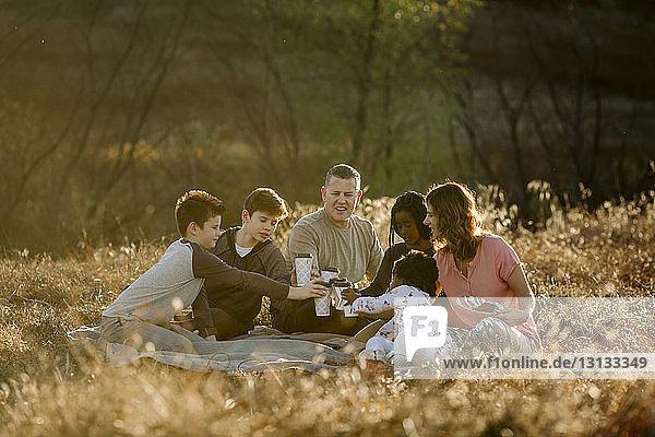 Eine Familie stößt auf Getränke an  während sie auf einem Grasfeld im Wald sitzt